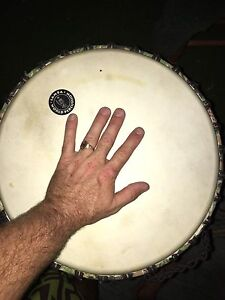 Large 14inch djembe drum Mount Coolum Maroochydore Area Preview