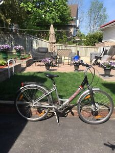 24v Giant Electric Bicycle