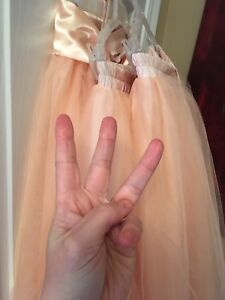 BNIB One, two or three matching pink tulle skirts