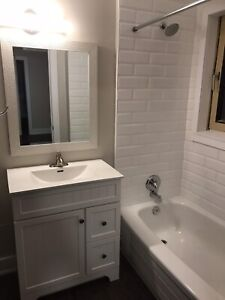 LARGE 3 BEDROOM APARTMENT DOWNTOWN! INCLUSIVE!