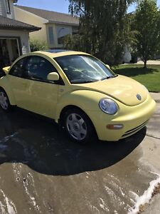 2000 VW Bug