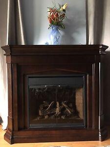 Foyer électrique chauffant