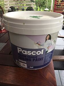 Ceiling Paint Brassall Ipswich City Preview