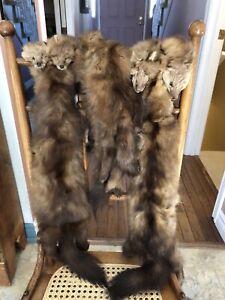 Luxurious Fox Fur Stole