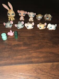 LPS Rabbit/Rodents