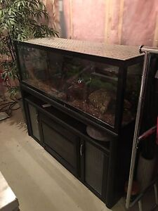 Reptile tank with fire place