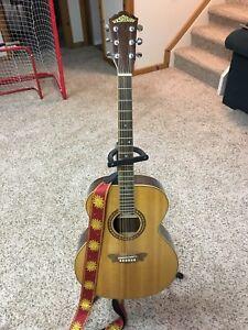 Washburn J12SN Acoustic Guitar