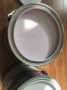 Behr light purple paint