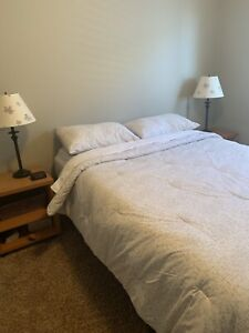 Queen bed, side table and chest of drawers