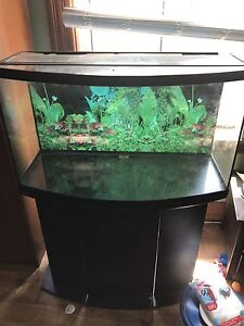 46 gallon bow front