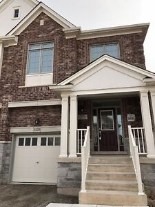 Brand New Home for RENT in Milton (semi-detached)
