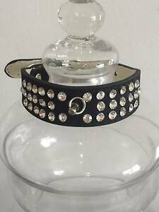 Black Velvet Rhinestone Dog Collar New Capalaba Brisbane South East Preview