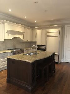 Full mint condition Kitchen with top of the line appliances +