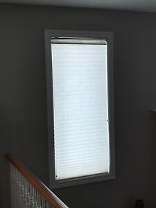 4 Levelor Window shades for sale