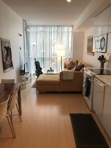 1 bedroom condo for a 6 month sublet from Sept 1