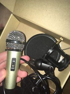 Small microphone
