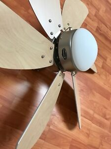 Ceiling fan in like new condition