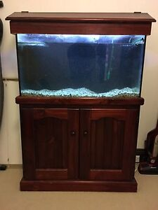 3ft Fish Tank Setup Leichhardt Leichhardt Area Preview