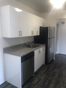 Beautiful upgraded units in the heart of Trenton!