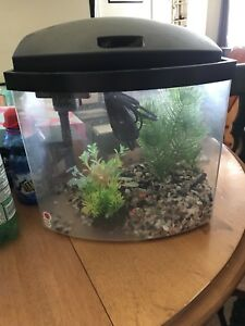 2.5 gallon Fish Tank