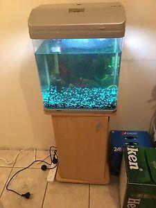 Aqua vital 380 fish tank Cabramatta Fairfield Area Preview