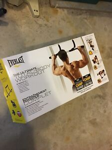 Everlast total body workout kit/pull up bar