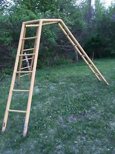 FREE orchard ladder . Come pick it up