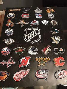 NHL plastic wall poster