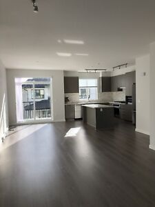$2700/ 4br - 1496ft2 - BRAND NEW 4 Bedroom Townhouse in Coquitl