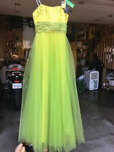 Prom/Grad dress , never been worn, brand new with tags!