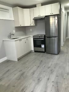 1 bedroom suite Available April 1 - Capital Hill Area