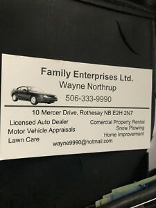 lawn care;snow plowing;home improvements;lawn mower tune ups