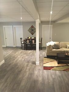 BRAND NEW 3 bedroom basement suite available July 1st