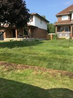 Grass cutting, landscaping, aerations, fall clean ups