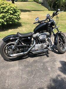 Harley Davidson Sportster XL 1200. Low KMs!!!