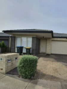 Wanted: Room for rent near Tarneit station