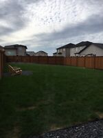 Landscaping Sod-Patios-Rock-trees and more!!!