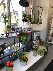 Flower Shop for Sale in Mississauga