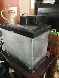 3gallon fish tank with filter