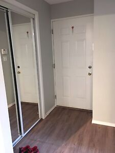 Basement suite for rent available March 1st