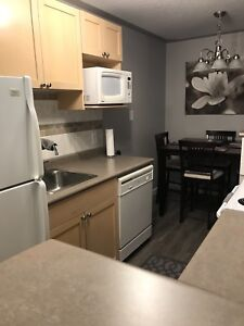 Newly renovated condo for rent in Westmount Area