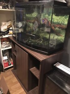 Aquarium 45 gallons vitre bomber / meuble