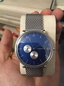 Mint Skagen with Day/Date function