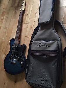 Guitare Électrique Godin