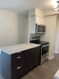 RENOVATED 2 BEDROOM—POWER INCLUDED, NEW APPLIANCES