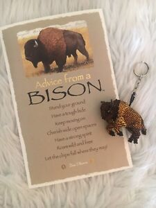 Beautiful Bison Gift Set