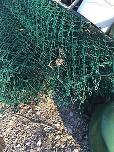 Green 5' chain link fence