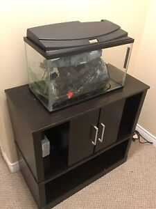 10 Fish tank with everything required plus stand