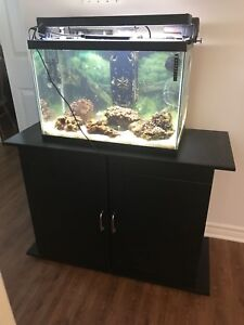 Salt water aquarium with live rocks and fish (2) Crabs (2)