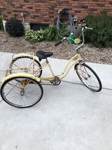 WANTED: ADULT TRIKE
